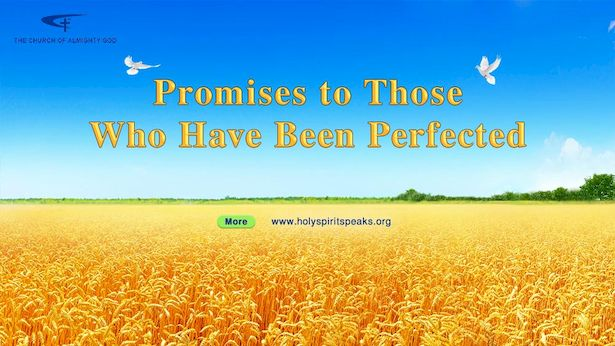 Promises to Those Who Have Been Perfected