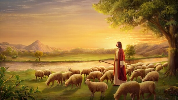 "Lord Jesus said: ""I am the good shepherd, and know my sheep"""